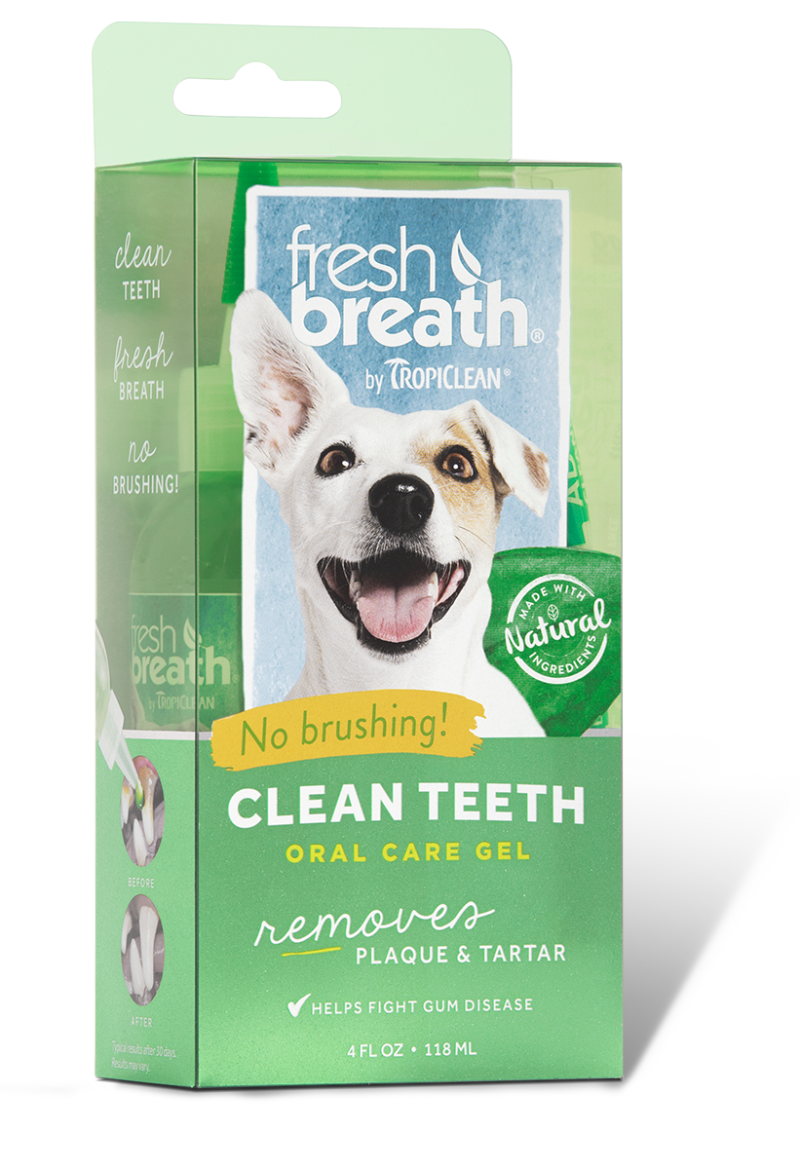 how to clean dogs breath