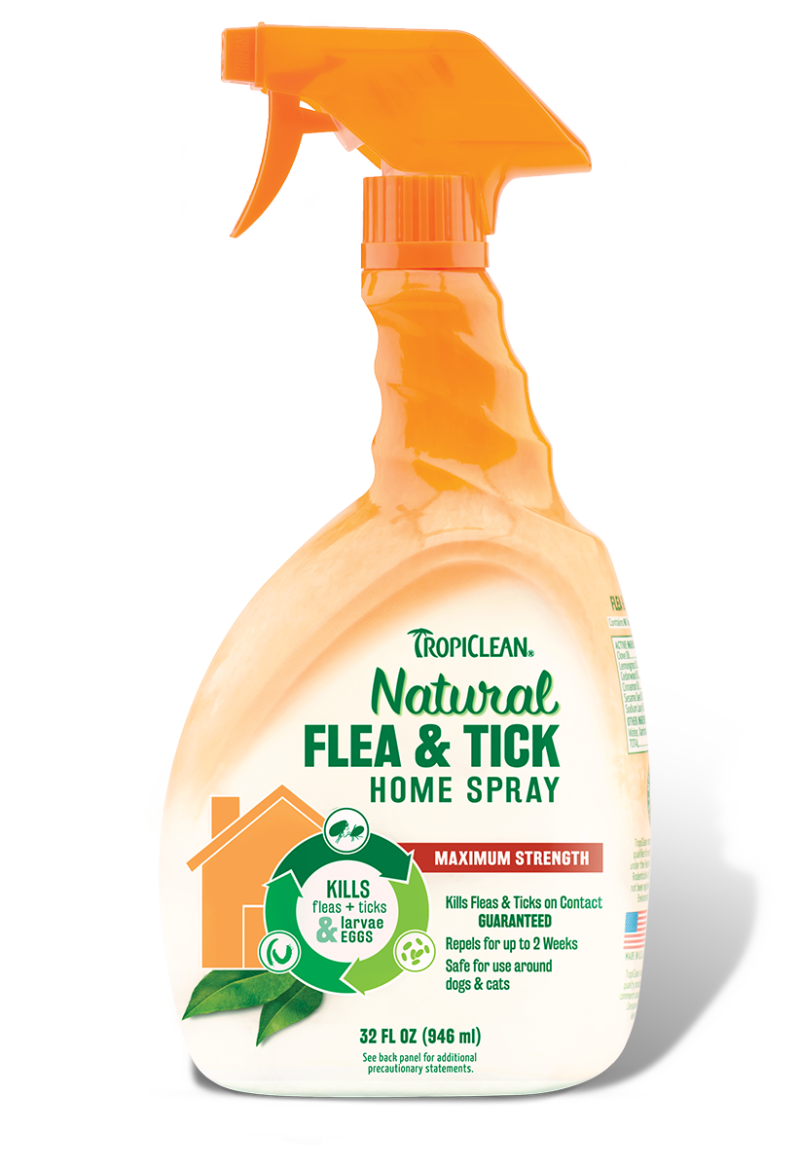 Natural Spray To Kill Fleas On Dogs