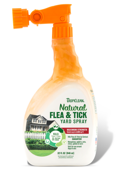 Natural Flea Spray For Cats And Dogs