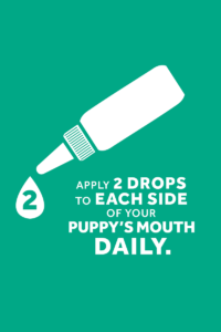 How to use Fresh Breath by TropiClean Oral Care Gel for Puppies