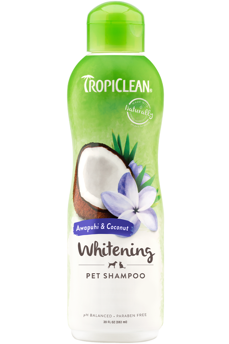 Tropiclean Awapuhi And Coconut Whitening Shampoo For Dogs